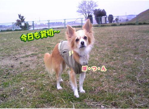 09-01-Rayぽつん