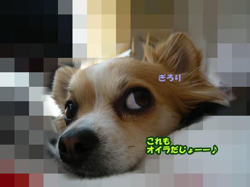 09-02Rayの表情6