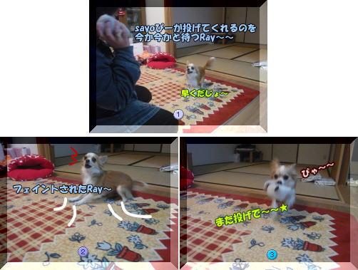 09-02sayoぴーと遊ぶ♪1