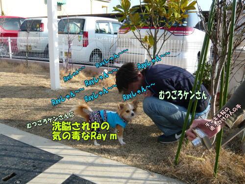 09-03 ムツゴロウけんさん1
