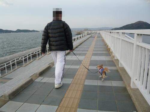 09-03 家族で散歩 2