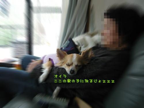 09-03 実家へ♪ 13