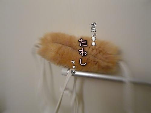 09-03 ?♪ 1