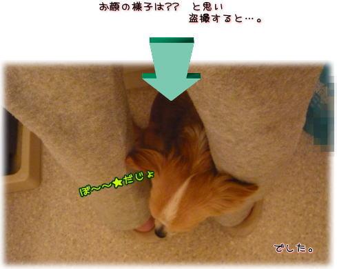 09-04 ドライアーすっきゃネン 1