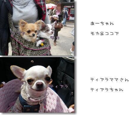 09-04 お花見? 4+