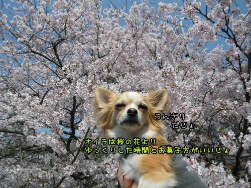 09-04 山中渓