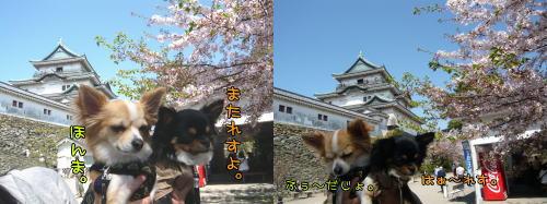 09-04 お城 3