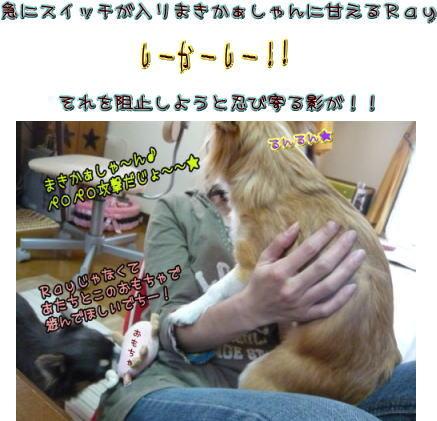09-04 お遊び♪