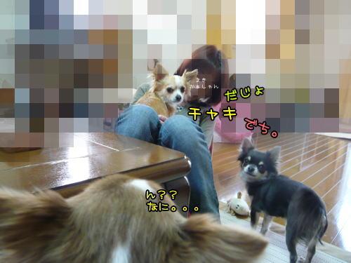 09-04 お遊び♪ 3
