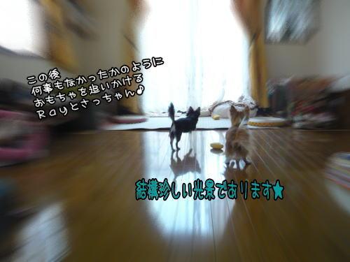09-04 お遊び♪ 4
