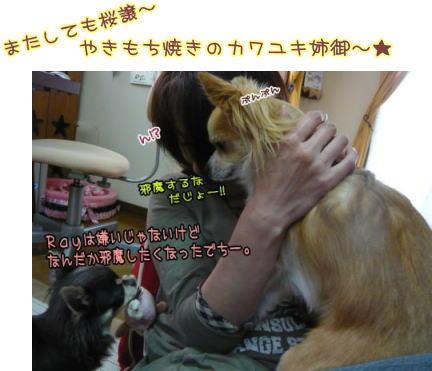 09-04 お遊び♪ 1