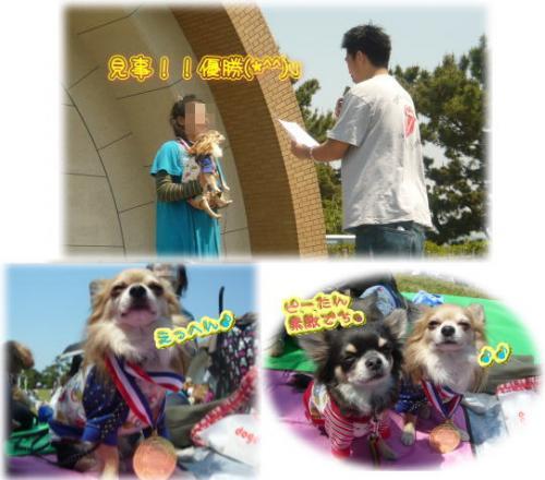 09-04 運動会 5