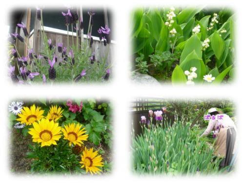09-05 お庭 2