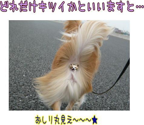 09-05 強風 1