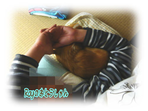 09-06 寝てる模様