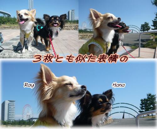 09-06 いい天気 1