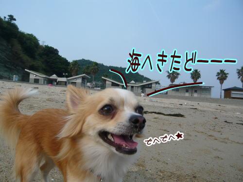 09-06 海だ?