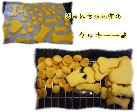 09-06 ワンコのお菓子 3
