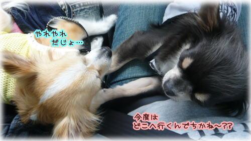09-07 棚田♪ 6