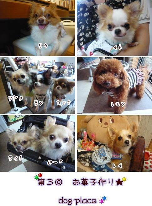 09-07 お菓子 7