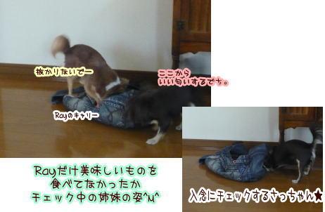 09-07 まき家♪