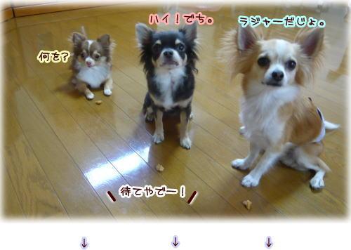09-07 まき家♪ 3