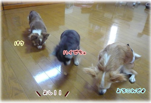 09-07 まき家♪ 4