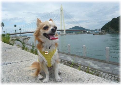 09-07 散歩