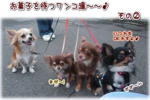 09-07 お菓子待ち 1