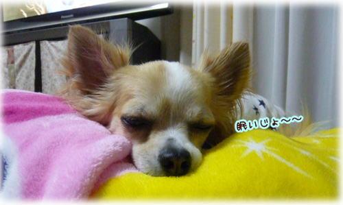 09-07 眠い