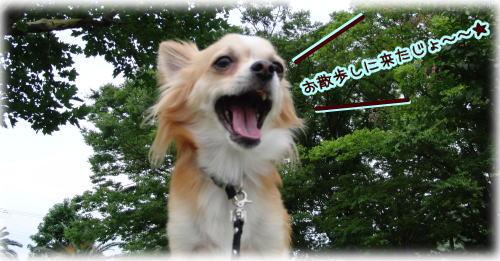 09-07 お菓子待ち 2