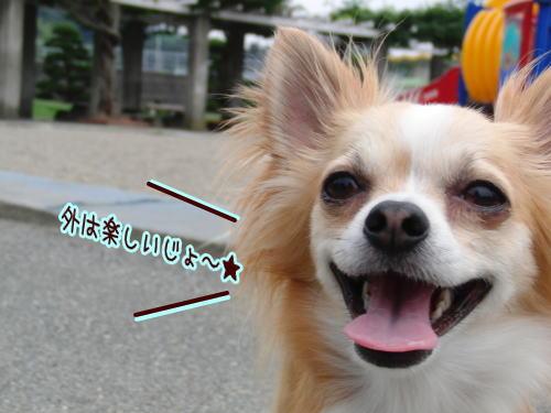 09-07 お菓子待ち 4