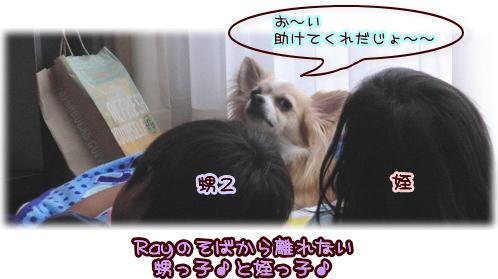 09-08 チビッ子と♪
