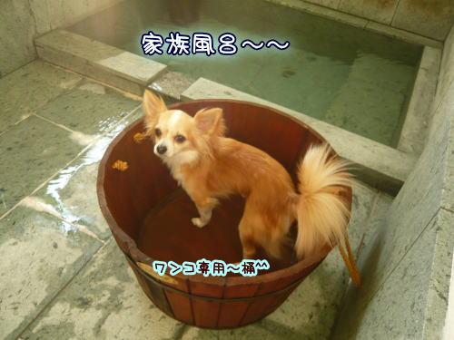 09-08 家族旅行 2日目☆ 7