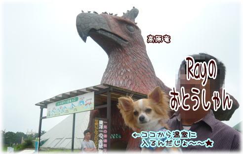 09-08 家族旅行 3日目♪ 7