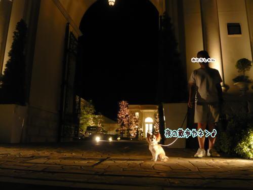 09-08 夜の散歩♪