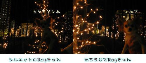 09-08 夜の散歩♪ 1