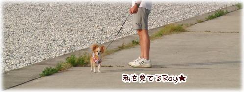 09-08 海辺 4