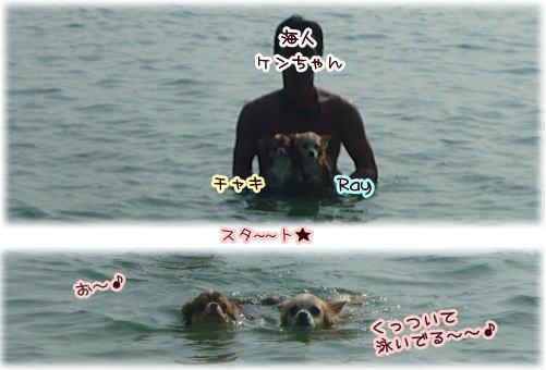 09-08 2009 Summer 4