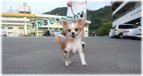 09-09 お休みの日 3