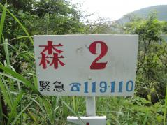 resize7999.jpg