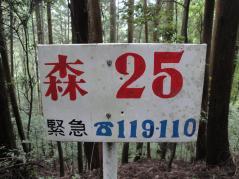 resize8193.jpg