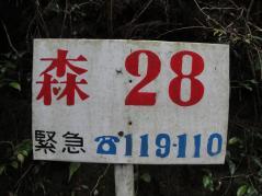 resize8197.jpg