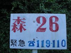 resize8619.jpg