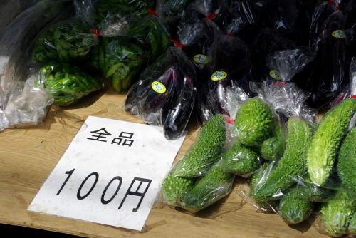 二和向台 商店街 ¥100千葉野菜