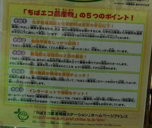 千葉エコ野菜