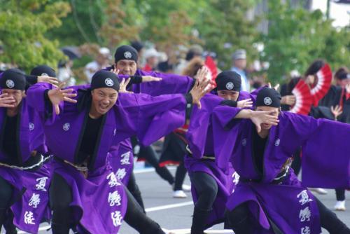 2008 鎌ヶ谷 よさこい 夏舞徒 紫