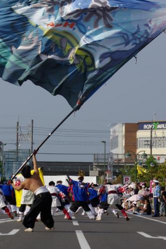 2008 鎌ヶ谷 よさこい 旗1