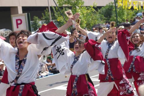 2008 鎌ヶ谷 よさこい 紅白2