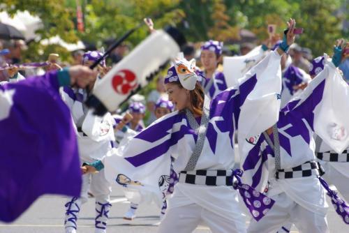 2008 鎌ヶ谷 よさこい 紫 ひょっとこ
